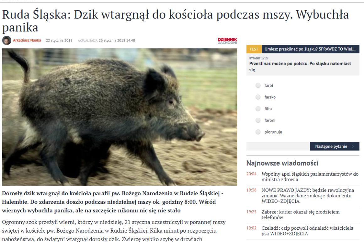 dzik w kościele www.sztuka-riposty.pl